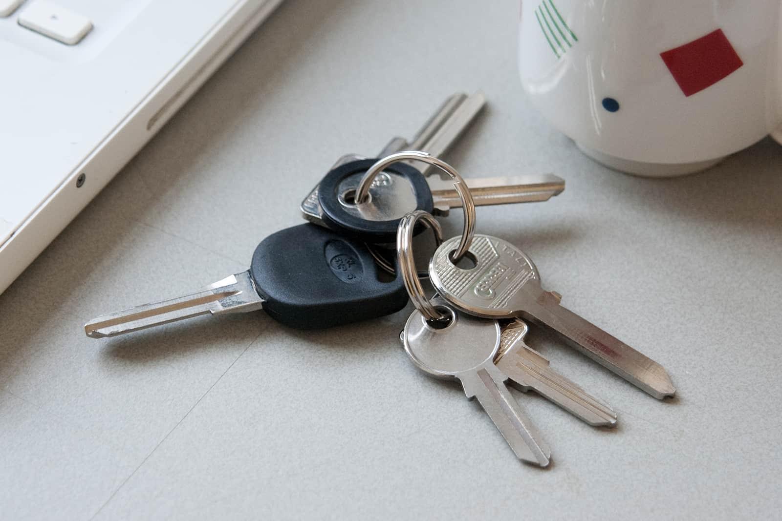 The Artists Keys, set of uncut keys, 2011