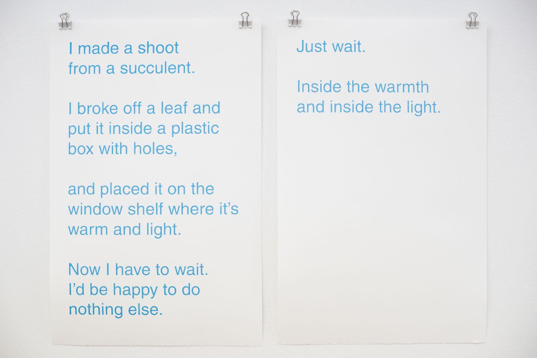 Poems, silkscreen on paper, 2016-2017