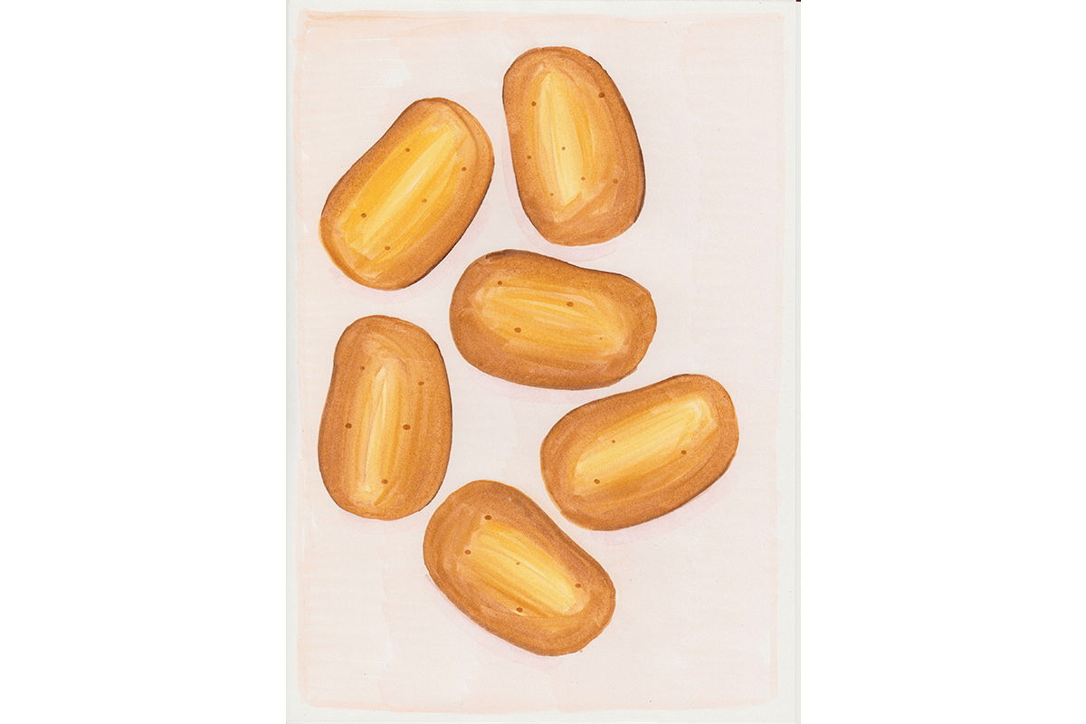 Potatoes - Copic drawing on paper, 2017