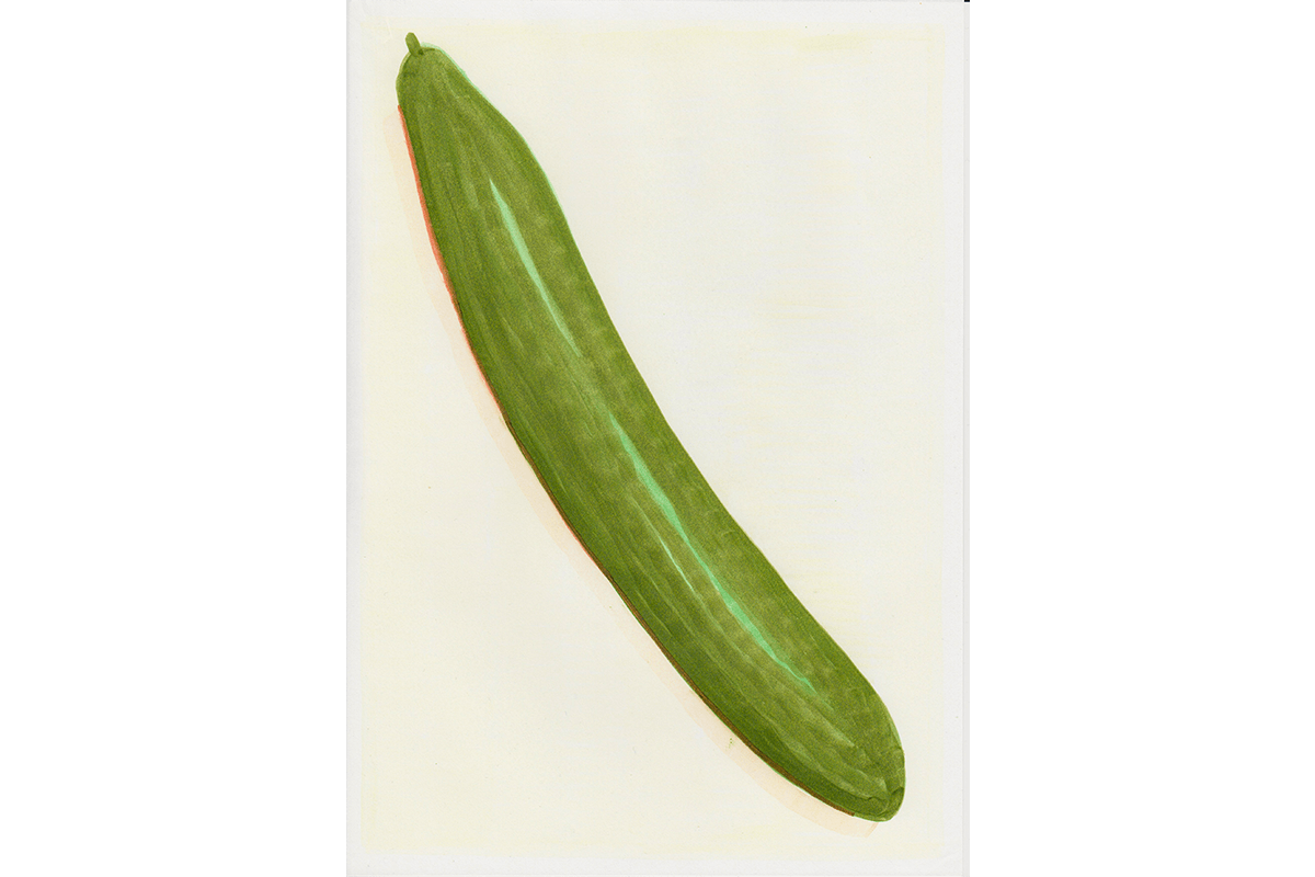 Cucumber - Copic drawing on paper, 2017