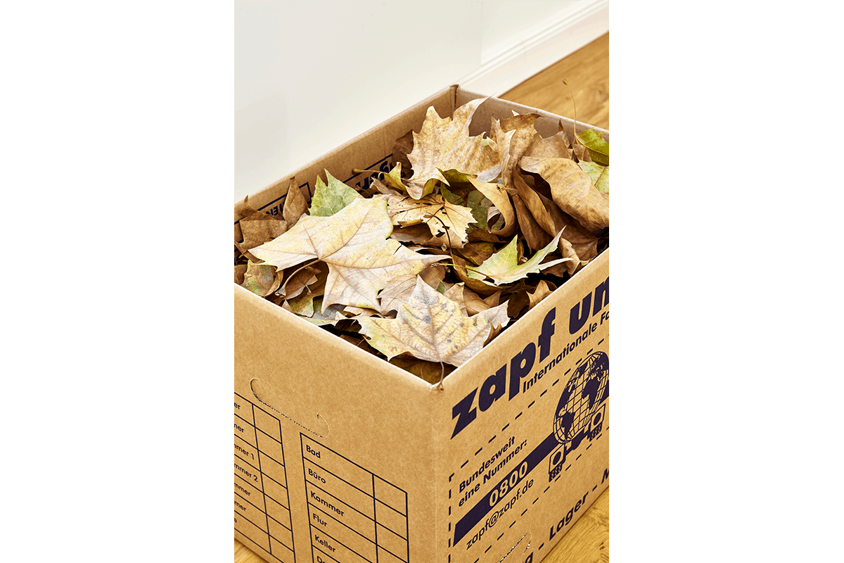 Piece for Autumn, moving box, autumn leaves, dimensions variable, 2014